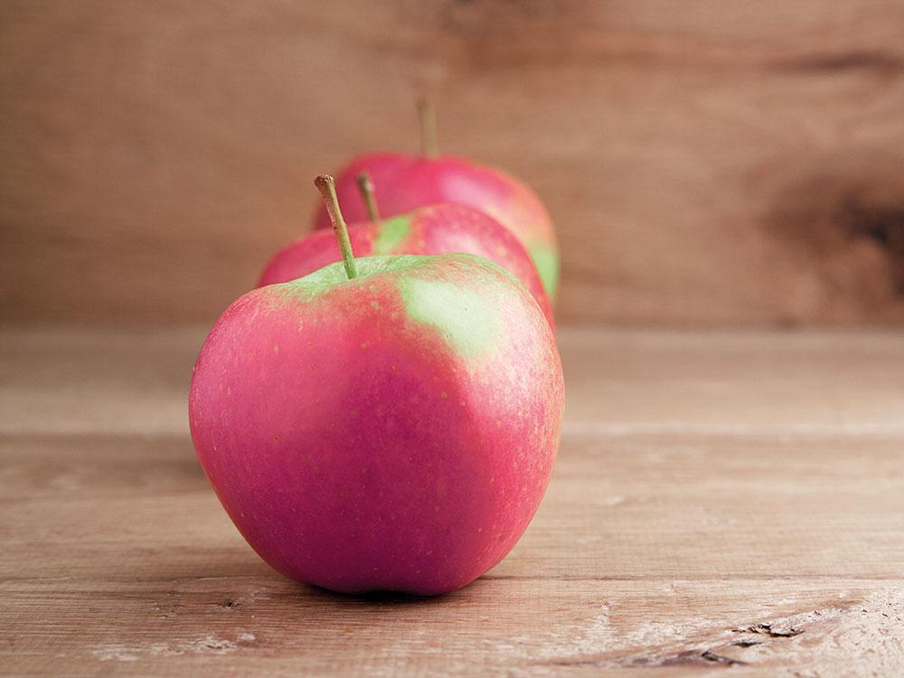 appels-rij